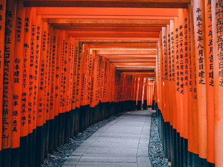 immagine per Tour indimenticabile Giappone