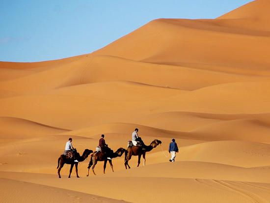 immagine per Tour Discovery Marocco