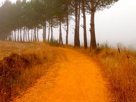 immagine per Portogallo e Santiago de Compostela