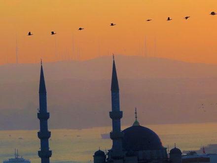immagine per Istanbul La porta d'Oriente