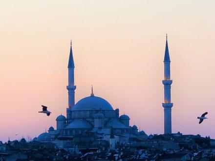 immagine per Capodanno ad Istanbul